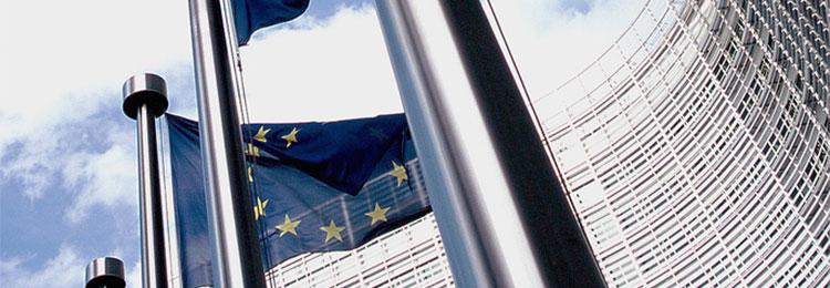 Réseau Européen pour l'Insertion Sociale et Professionnelle des Personnes Défavorisées